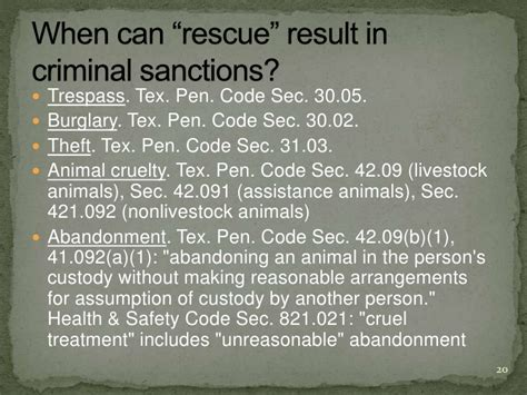 section 42 01 penal code animal welfare legal issues