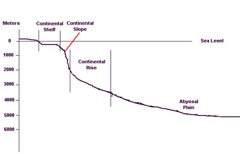 Continental Shelf Slope And Rise by The Days Of Peleg Migrations And Changes In Sea Level