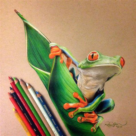 Fascinating Realistic Colored Pencil Drawings By Robin Gan Colored Drawings
