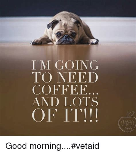 I Need Coffee i need coffee www pixshark images galleries