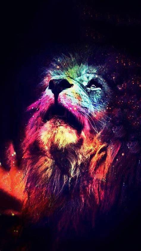 imagenes de leones swag colors lion love rainbow vale wallpapers image