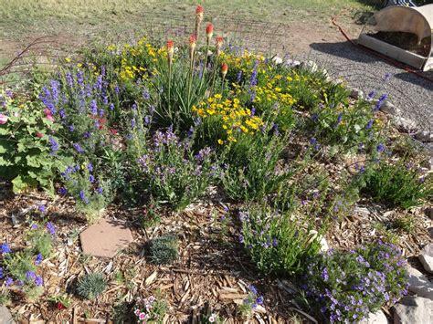 the scientific gardener a new mexico gardening getaway