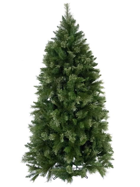 rocky mountain fir christmas tree 2 3m christmas trees