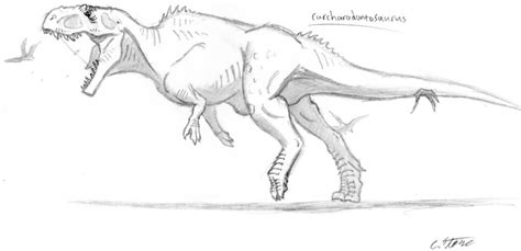 carcharodontosaurus coloring page coloring pages