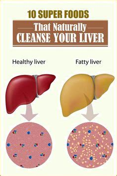 13 Foods That Detox Your by 1000 Images About Liver On Fatty Liver Fatty