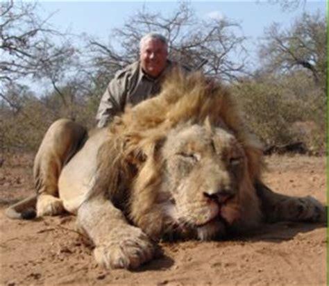 imagenes de leones asesinos esto es ser humano taringa