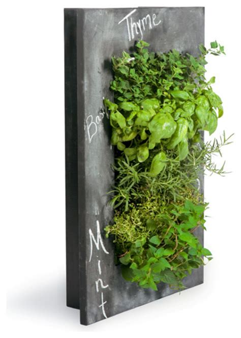 grovert wall planter chalkboard contemporary indoor