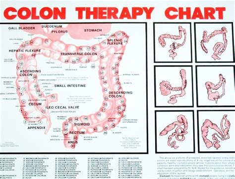 Colon Detox Therapy by Colonic Definition What Is