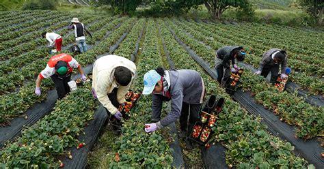 imagenes satelitales para agricultura la agricultura quiere ser una soluci 243 n al cambio clim 225 tico
