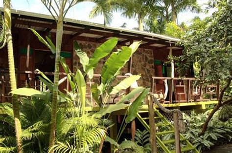 cocoa cottages dominica caribbean businesses for sale b b tour company for sale