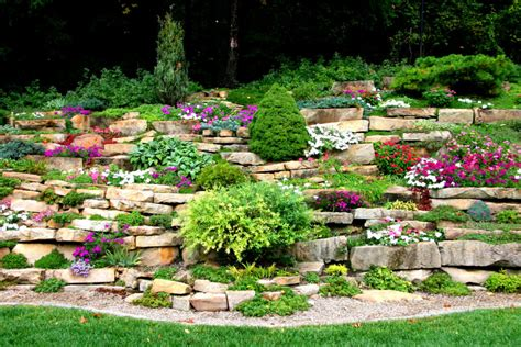 meadow brook garden club programs rochester mi