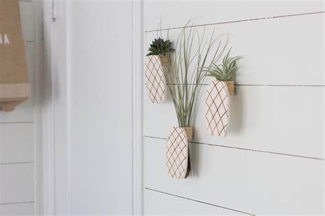 diy air plant holder always rooney pineapple air plant holder diy