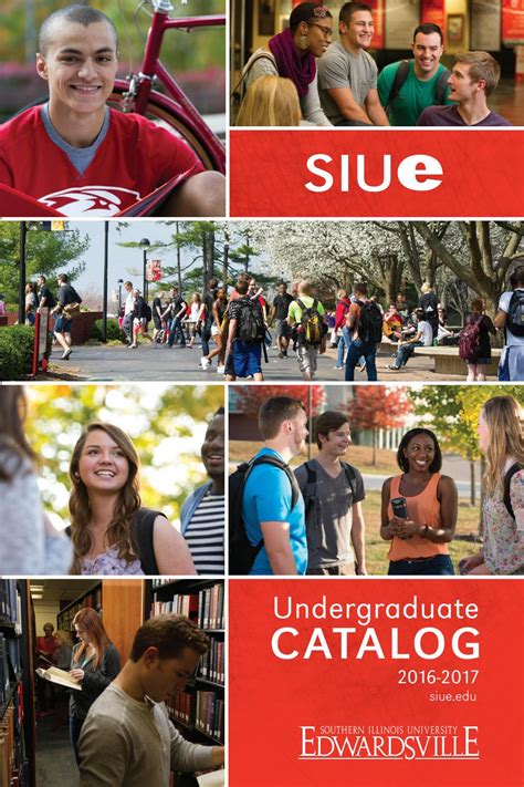 Siue Mba Requirements by Siue 2016 2017 Undergraduate Catalog By Siue Issuu