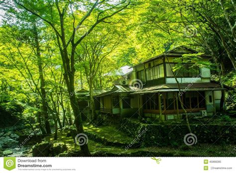 house in japanese old japanese house in the forest stock photo image 45868285