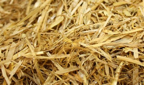 straw bedding jlc farming bales haylage silage sales wheat and