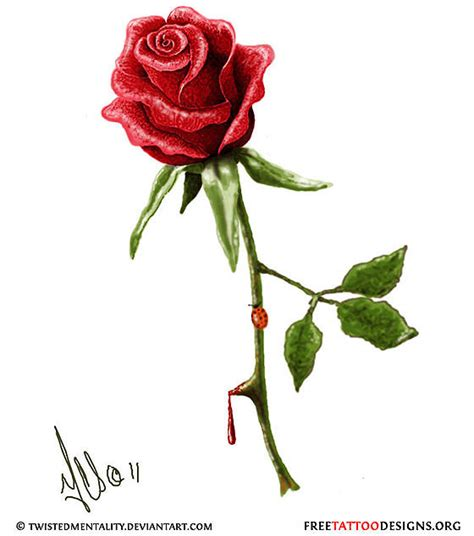 single rose tattoos designs 50 tattoos meaning