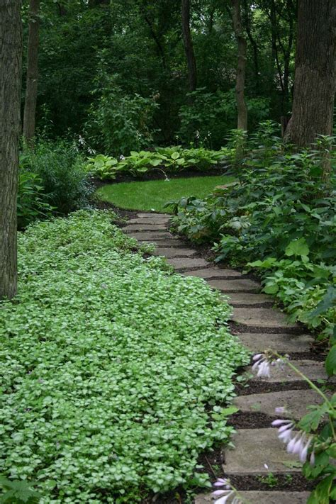 amazing backyard landscapes 17 best images about green white landscaping on