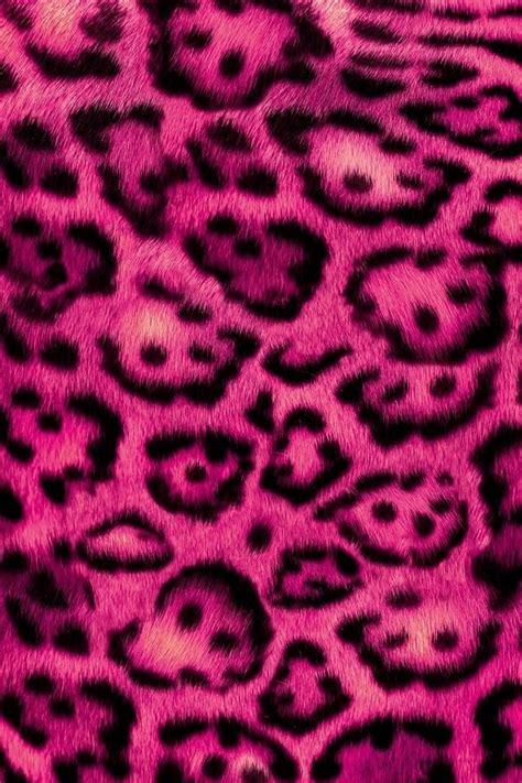 furry zebra print wallpaper for walls fuzzy pink leopard wallpaper wallpapers pinterest