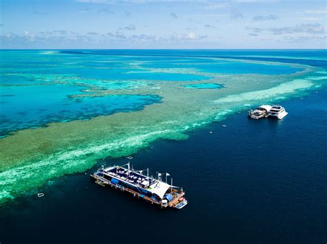 great barrier reef pontoon the hardy reef pontoon at the great barrier reef