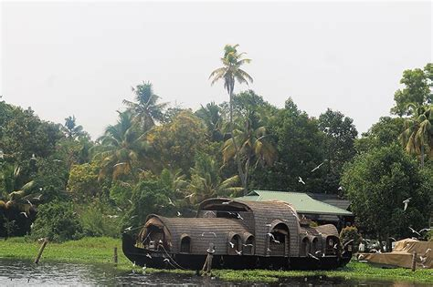boat cruise alleppey alleppey backwaters cruise review