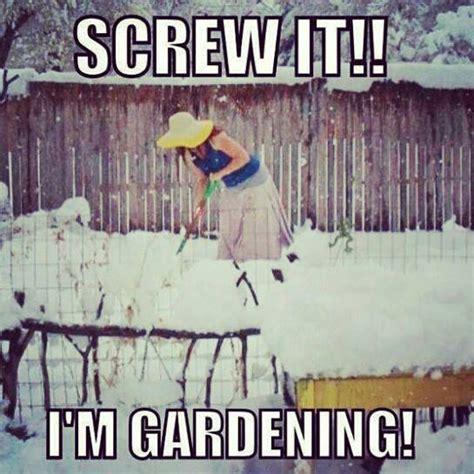 vegetable gardening in colorado gardening in colorado lol the o jays