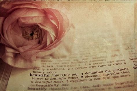 beautiful meaning beautiful book colour cute definition dictionary