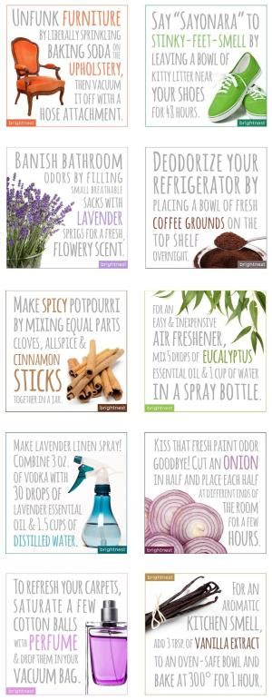 how to eliminate odors in a room essential oils to get rid of bugs more