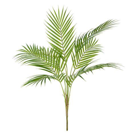areca palm artificial areca palm by miafleur notonthehighstreet