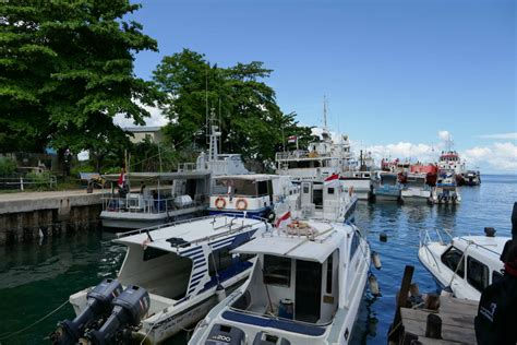 ferry waisai sorong diving on the islands of raja at indonesia golive
