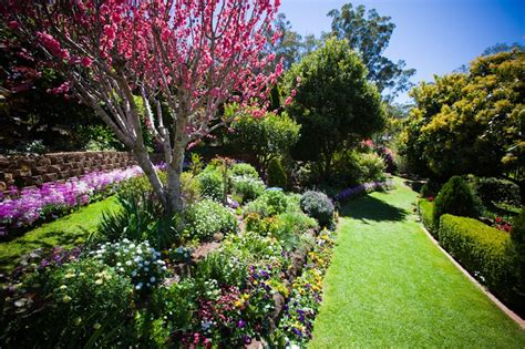 Another Prize Winning Garden At Toowoomba Carnival Of Flowers In Australian Gardens