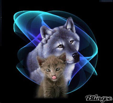imagenes de lobos llorando immagine lupo con gatto 131184627 blingee com