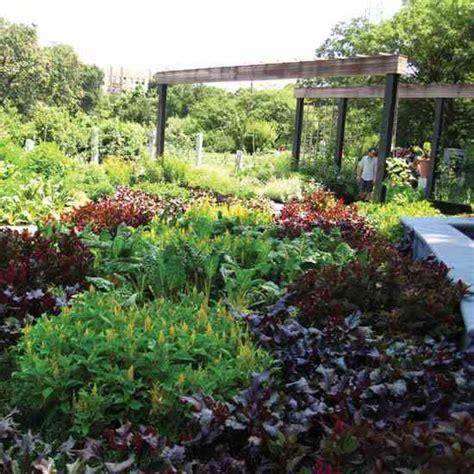 edible landscape design edible garden design gardening earth living
