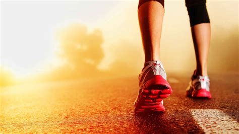 12 best places to buy running shoes both and offline