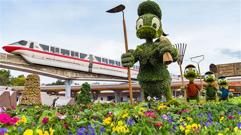 disney flower and garden 2017 epcot flower and garden festival plans and info