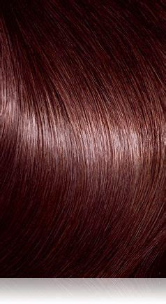 4r hair color 4r radiant brown precision foam permanent