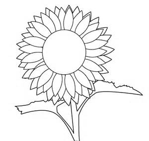 Sunflower Clip Outline by Sunflower Line Cliparts Co