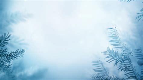 frozen winter wallpaper winter background with frozen trees wallpaper