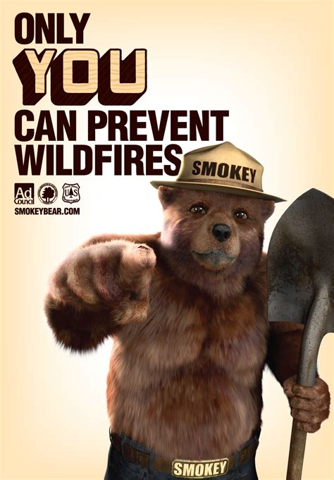 Only You Can Prevent Forest Fires Meme - wildfires what you need to know blogs cdc