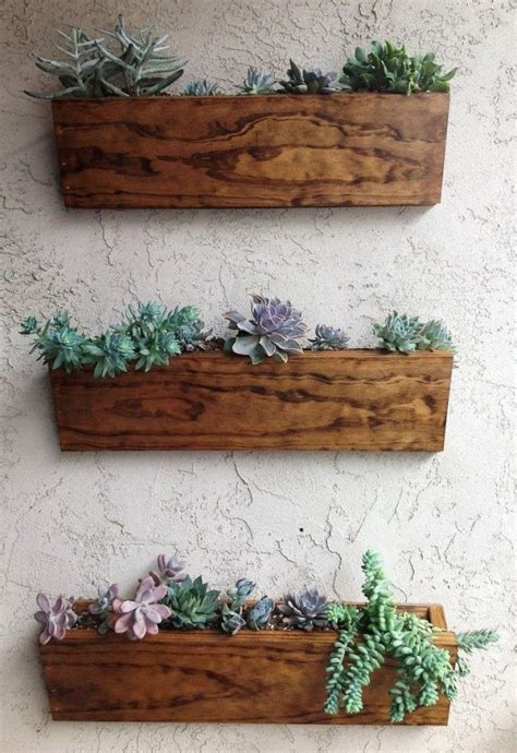 hanging plants design ideas   home vertical