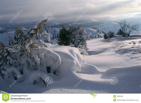 school in snow royalty free stock image image morning snowscape stock photo image of freezing snowfall