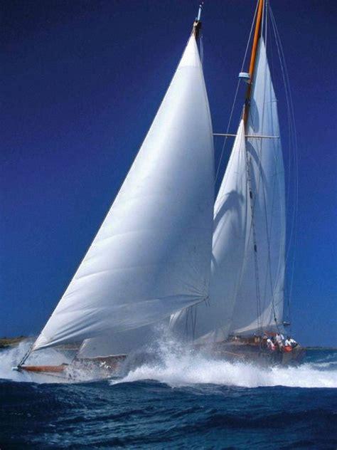 yacht boat lyrics 185 best like a bird images on pinterest sailing