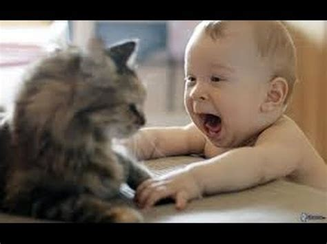 cute dogs and adorable babies compilation youtube cute cats and dogs love babies new compilation hd 2015