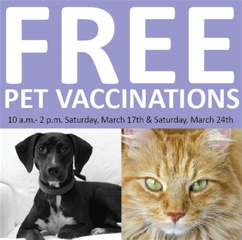 cheap puppy vaccinations free pet vaccinations kansas city on the cheap