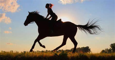 Horseback Images