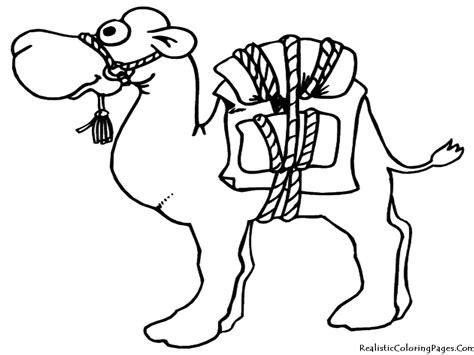 Camel Coloring Pages Realistic Coloring Pages Camel Coloring Page