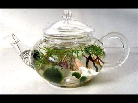 awesome indoor water garden inspirations youtube