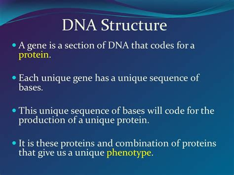 are genes sections of dna that code for certain traits are genes sections of dna that code for certain traits