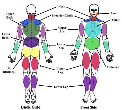 test fibromialgia fibro files diagnosing fibromyalgia