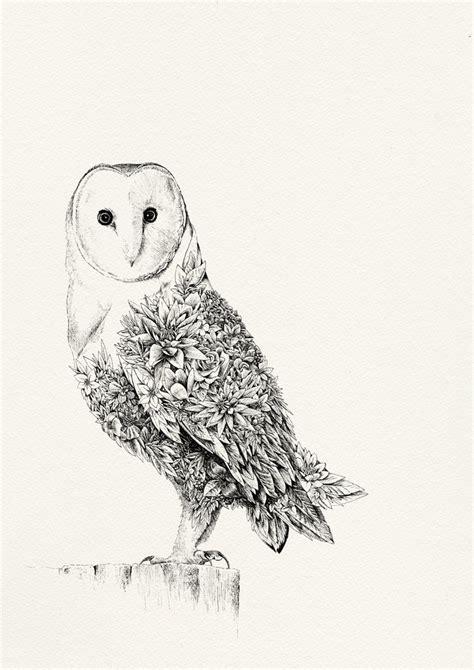 printable barn owl pictures barn owl gicl 233 e print marini ferlazzo art for wildlife