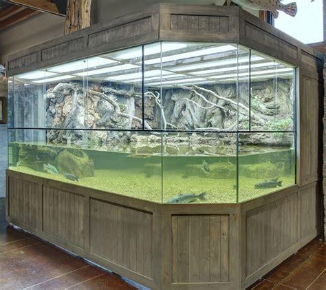 reptile l stand diy 207 best vivarium aquarium terrariums images on